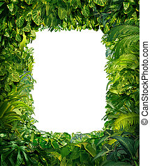 Jungle Border - Jungle border blank frame with rich tropical...