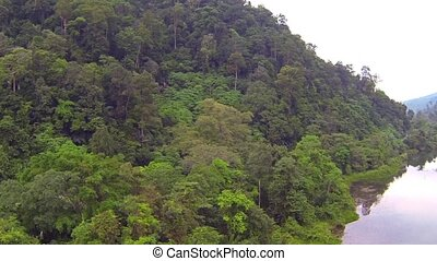 Jungle covered mountain and river, aerial video clip