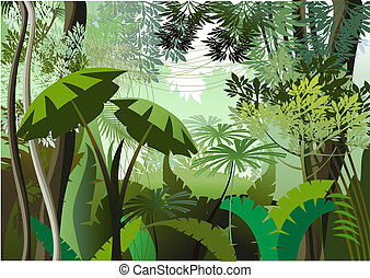 Jungle Day - Overgrown plants in the jungle