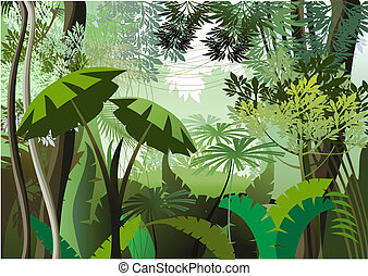 Overgrown plants in the jungle