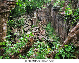 Jungle eating the amazing temple of Beng Mealea (12th century), near Angkor Wat (Siem Reap, Cambodia)