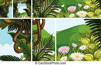 jungle, ensemble, scène