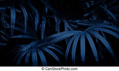 Jungle Ferns In Breeze At Night - Tropical fern plants in...