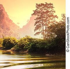 Jungle in Vietnam - Tropical landscapes,Vietnam
