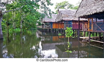 Jungle Lodge on Stilts - Lodge in the Amazon rain forest on...
