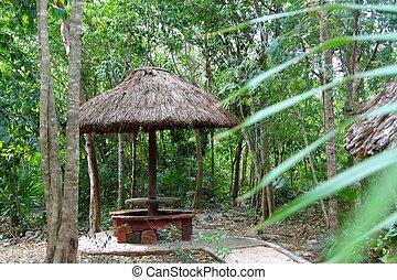 Jungle palapa hut sunroof in Mexico Mayan riviera...