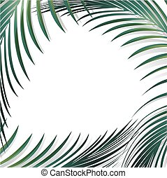 Jungle Palm Leaf Background Over White