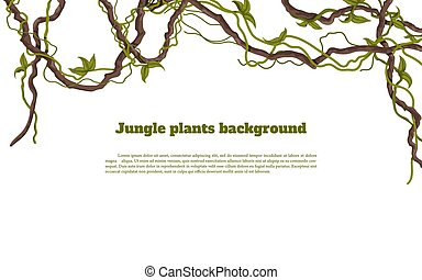 Jungle plants background. Tropical frames. Isolated exotic flora. Greeting card borders. Rainforest liana. Design elements