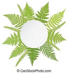 Jungle poster. Fern frond backgroun