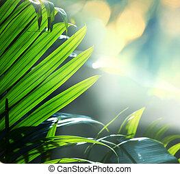Jungle - jungle in Vietnam