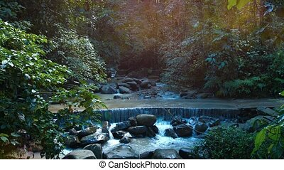 Whitewater from a natural stream flows across a concrete road at a popular, jungle nature park in Borneo, Malaysia, with sound. Video UltraHD 4k
