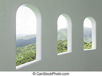 jungle view
