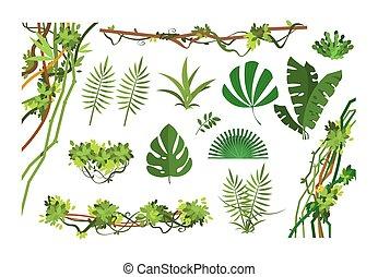 Jungle vine. Cartoon rainforest leaves and liana overgrown plants. Isolated vector set