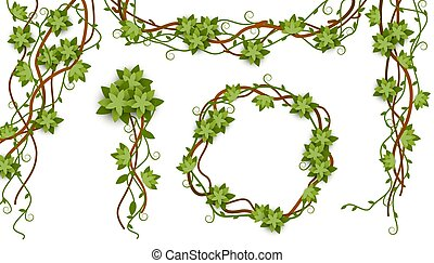 Jungle vine isolated frame set with tropical plant liana branches, green leaves and flowers
