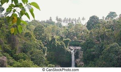 jungle waterfall in sunny weather