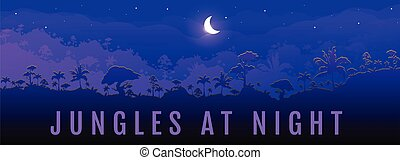 Jungles at night flat color vector banner template. Panoramic view on exotic woods. Moon cresent on dark sky. Travel to rainforest. Tropical 2D cartoon landscape with woods on background