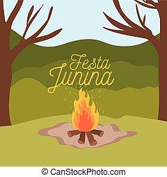 junina, coloridos, festa, fogo, cartaz, madeira, fundo, ao ar livre
