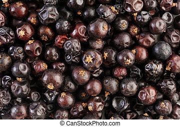 Juniper berries background