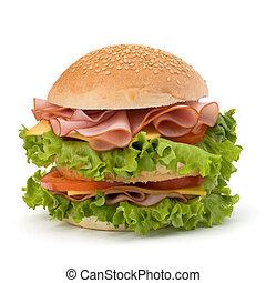 Junk food hamburger