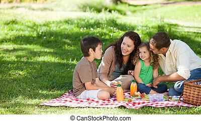 junto, família, fazendo piquenique