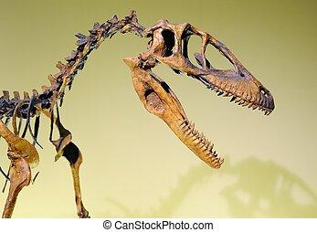 Jurassic dinosaur - Dinosaur head in a Jurassic dinosaur...