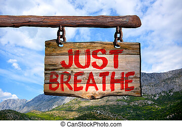 Just breathe motivational phrase sign on old wood with...