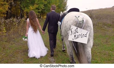Fiancee in white dress and fiance in black suit go along autumn wood, holding hands, leading gray horse next to them with tablet affixed to tail with inscription just married. Back view. Close up