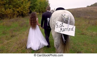 Bride in white dress and groom in suit going along edge of autumn wood, holding hands, leading gray horse next to them with tablet affixed to tail with inscription just married. Back view. Close up