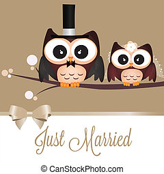 Just Married - Two cute owls just married on special...