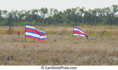 juste, drapeaux, onduler, vent, rayé, deux