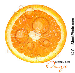 juteux, illustration, vecteur, fond, orange, frais