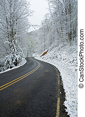 JW_019_071_05 - Snowy Roadway in Western North Carolina