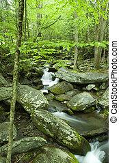 JW_025_032_05 - Roaring Fork, Springtime, Great Smoky Mtns...