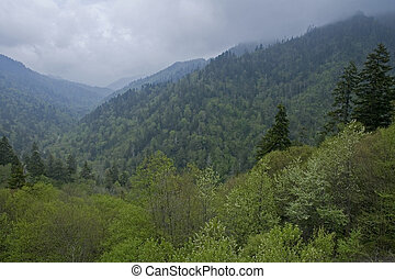 JW_027_072_05 - Spring Scenic from Morton Overlook, Great...