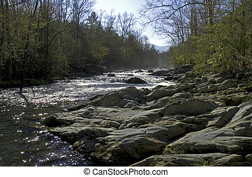 JWC_008_084_05 - Spring Scenics, Little Pigeon River, Great...