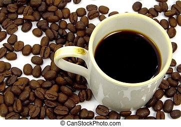 kávécserje, 2, bögre