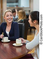 kávécserje bevásárlás, nők, beszélgető, ülés