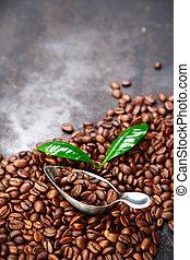 kávécserje, felett, szürke, struktúra, bab, háttér