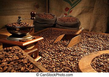 kávécserje grinder