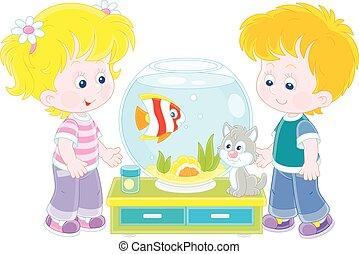 kã¤tzchen, fische, kleine kinder, aquarium