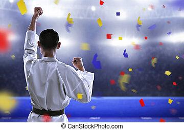 kämpfer, kriegerisch, arena, karate, künste