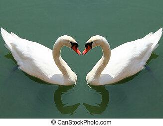 kärlek, falla