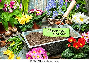 kärlek, min, trädgård