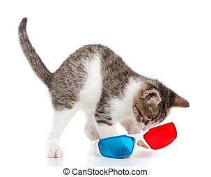 kätzchen katze, mit, gläser 3d