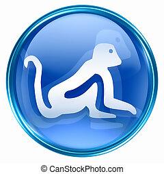 kék, állatöv majom, ikon