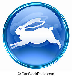 kék, állatöv nyúl, ikon