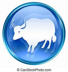 kék, állatöv ox, ikon