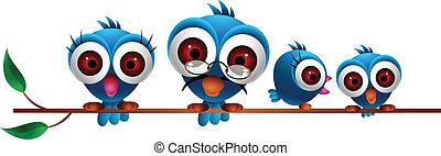 kék, csinos, madár, család