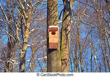 kék, fából való, fa, ég, nagy, nesting-box, függő