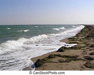 kék, tengerpart, ég, nyár, háttér, lesiklik, víz, tenger, lenget, homokos, vector.